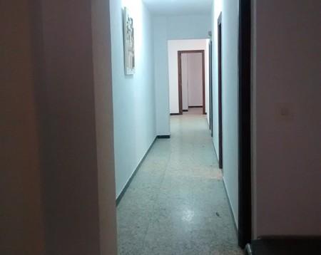 Apartamento Tropicana en Calpe (5)