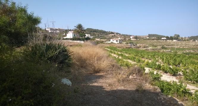 Casa de campo Xurra en Teulada (2)