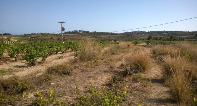 Casa de campo Xurra en Teulada (31)