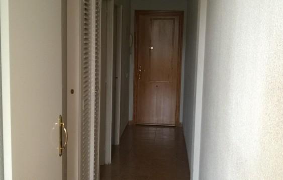 Apartamento Playmon Fiesta en Benidorm (5)