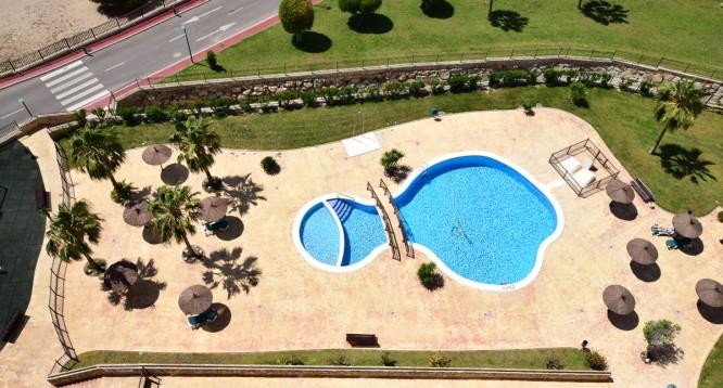 Apartamento Jardin de Benidorm en Benidorm (31)