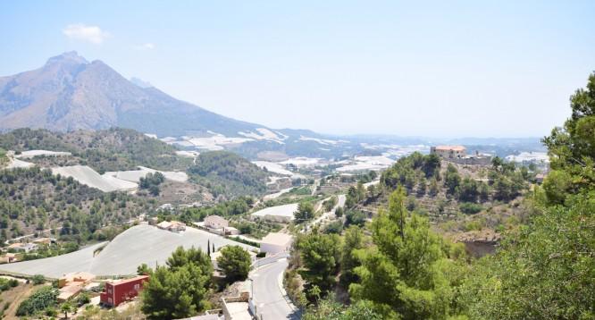 Villa Almedia en Callosa d'en Sarria (7)