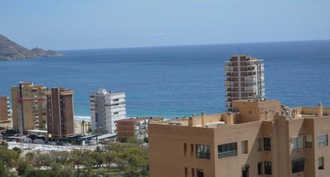 Apartamento Coblanca 32 en Benidorm (6)