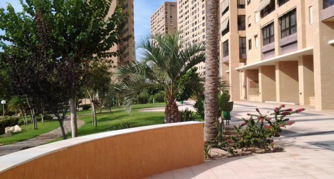 Apartamento Coblanca 40 at en Benidorm (27)