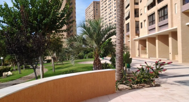 Apartamento Coblanca 40 en Benidorm (51)