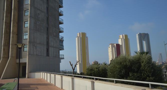 Apartamento Torre Pinar en Benidorm (50)