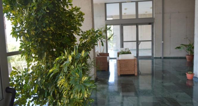 Apartamento Torre Pinar en Benidorm (55)