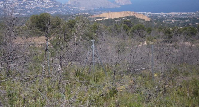 Parcela Pie de Monte en La Nucia (10)