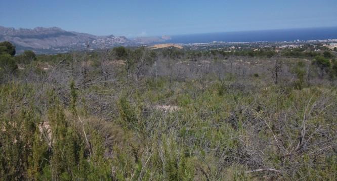 Parcela Pie de Monte en La Nucia (13)