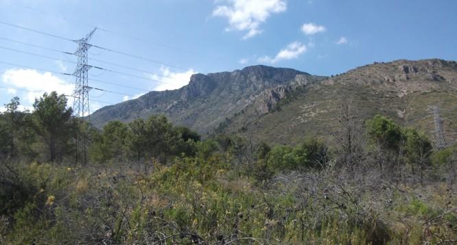 Parcela Pie de Monte en La Nucia (2)