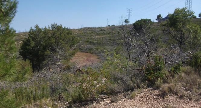 Parcela Pie de Monte en La Nucia (5)