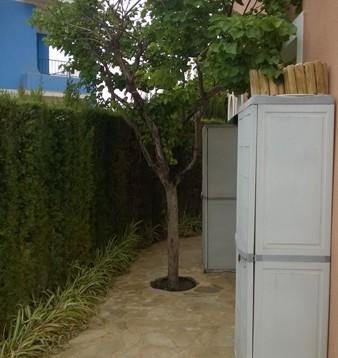 Bajo con jardín Enchinent 2 A en Calpe (10)
