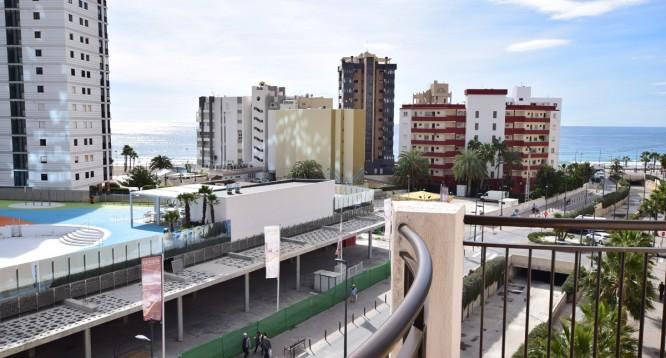 Apartamento Paola V en Calpe (6)