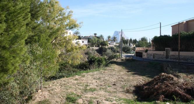 Parcela Canuta Baja en Calpe (1)