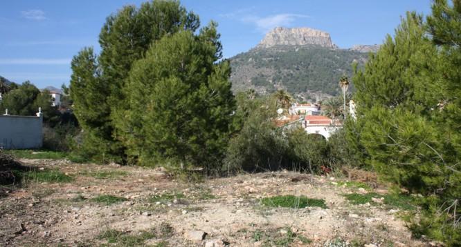 Parcela Canuta Baja en Calpe (2)
