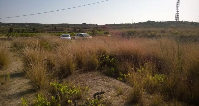 Casa de campo Xurra en Teulada (32)