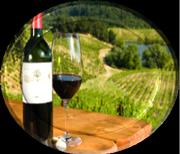 Испанское вино