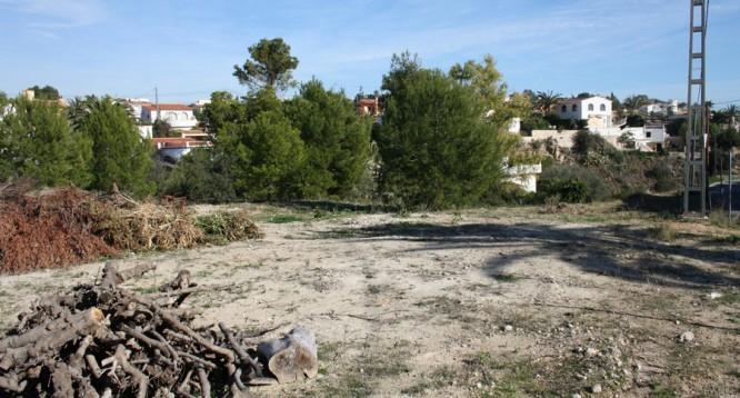 Parcela Canuta Baja en Calpe (4)