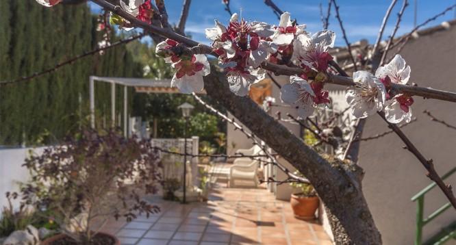 Villa Pinosol para alquilar en Javea (17)