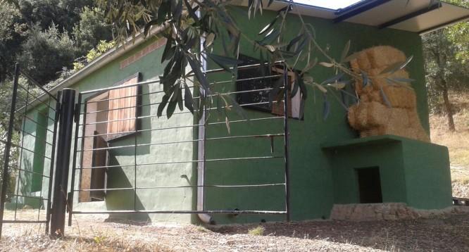 Villa Siruela en Badajoz  (9)